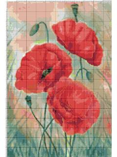 Вышивание крестиком: схемы 3 мака, рисунок