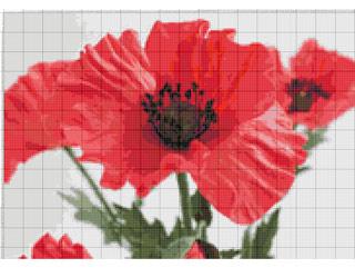 Вышивание крестиком: схемы Крупный мак, рис.3