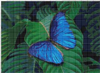 Вышивание крестиком. Синяя бабочка