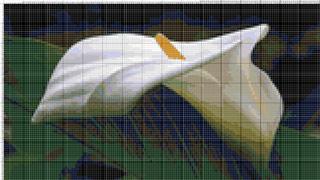 Вышивание крестиком: схемы Калла