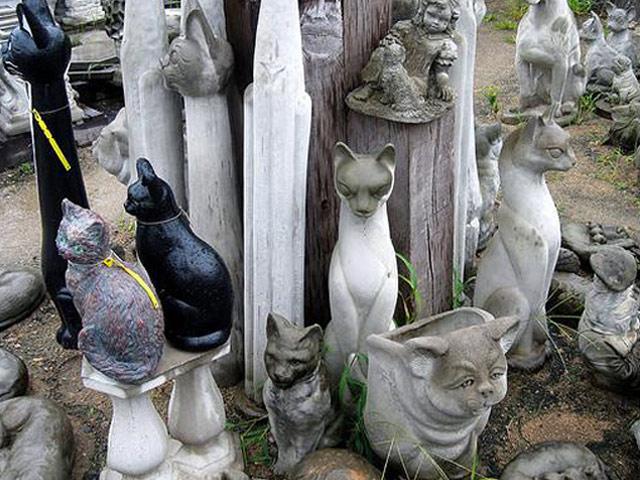 Коллекционирование кошачьей тематики: музей