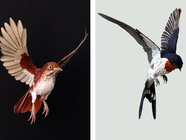 Диана Белтран Эррера: бумажная птица. Фото 14
