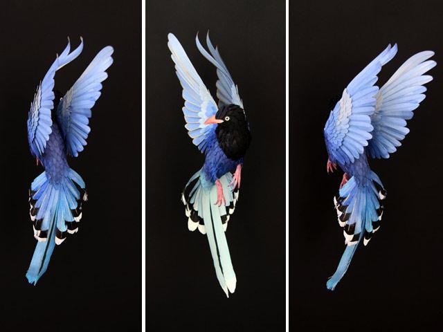 Диана Белтран Эррера: бумажная птица. Фото 2