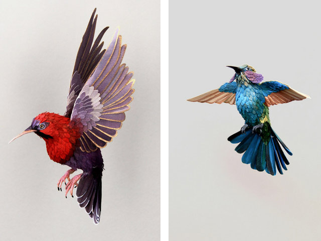 Диана Белтран Эррера: бумажная птица. Фото 3