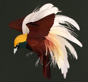 Птицы из бумаги Дианы Белтран Эррера