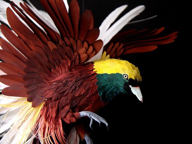 Диана Белтран Эррера: бумажная птица. Фото 6