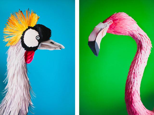 Диана Белтран Эррера: бумажная птица. Фото 9