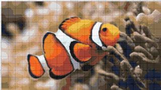 Вышивание крестиком. Рыбка