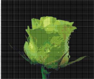 Вышивание крестиком: схемы Зеленая роза