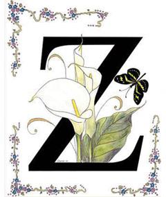 Вышивание крестиком: схемы Буква Z