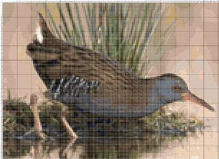 Вышивание крестиком. Птица у воды