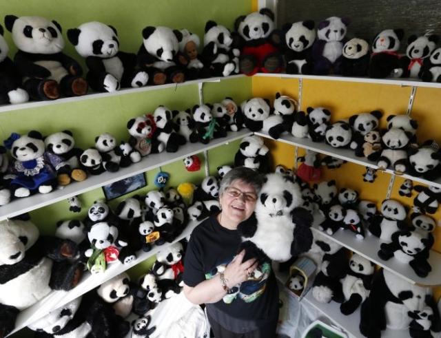 Хобби – коллекционирование игрушечных панд