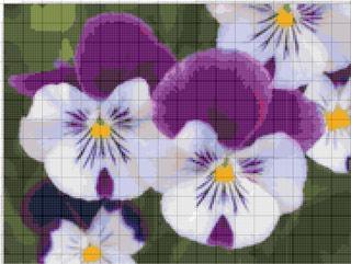 Вышивание крестиком: схемы Анютины глазки