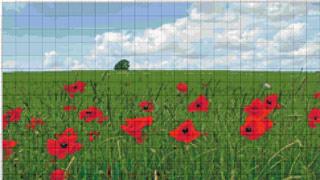 Вышивание крестиком: схемы Маки на поле, рис.3