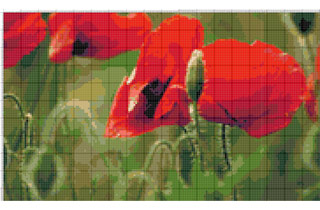 Вышивание крестиком: схемы Маки на поле, рис.4