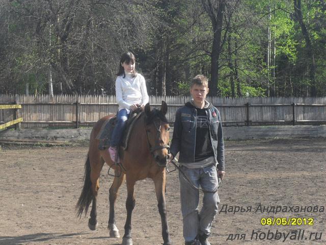 Верховая езда как хобби