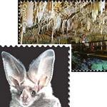 Вид коллекционирования Спелеофилателия - марки с изображениями пещер