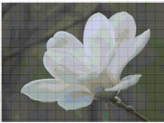 Вышивание крестиком: схемы Белый цветок