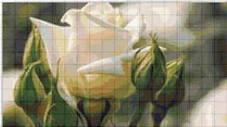 Вышивание крестиком: схемы Белая роза
